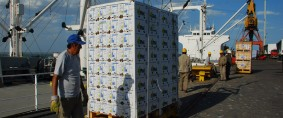 Transbordos de cargas de exportación