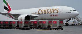 Demanda de carga aérea mundial creció un 12,1% en agosto