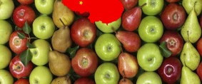 Escenario favorable para manzanas y peras en el mercado chino
