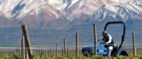 Mendoza: Creció exportación de frutas en el 1er. trimestre