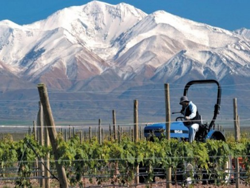 Mendoza: El ferrocarril, concreción difícil