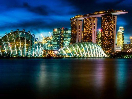 Libre Comercio. Negociaciones entre el Mercosur y Singapur