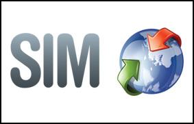 Declaración detallada SIM