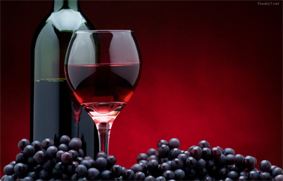 uva y vinos