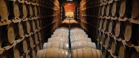 Bajar aranceles para exportar más vino