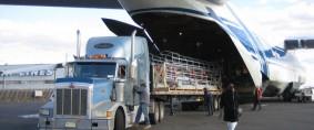 Aeropuertos y almacenes: La proximidad en duda