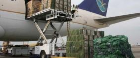 Crecieron los volúmenes de carga aérea en mayo