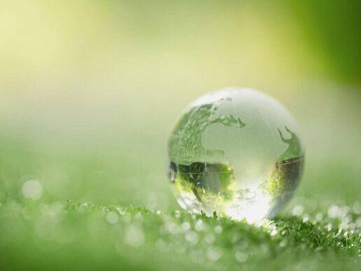 Sustentabilidad en la logística y el comex