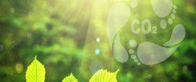 Huella de Carbono, el desafío global. Informe de AIMAS