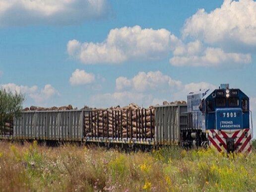Trenes Argentinos Cargas. Más toneladas transportadas